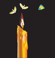Fly around a candle vector