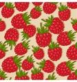 Raspberries seamless pattern vector