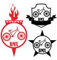 Bmx vector