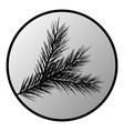 Fir tree branch button vector