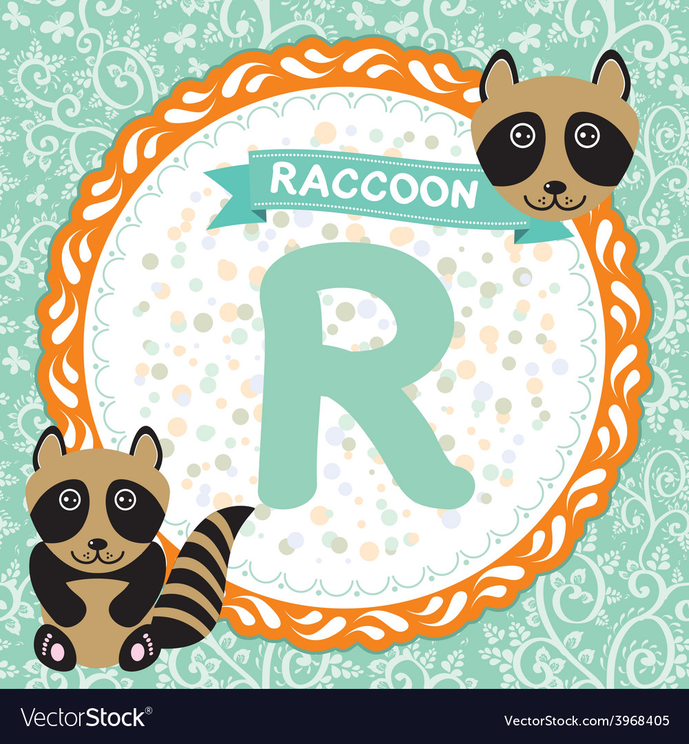 Abc animals r is raccoon childrens english vector | Price: 1 Credit (USD $1)