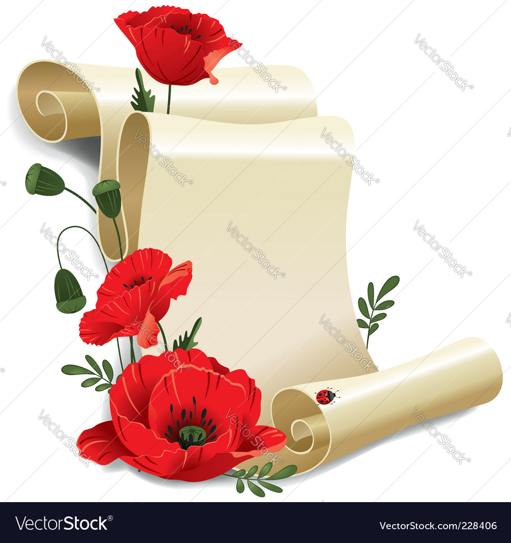 Roll of old paper and poppies vector | Price: 3 Credit (USD $3)