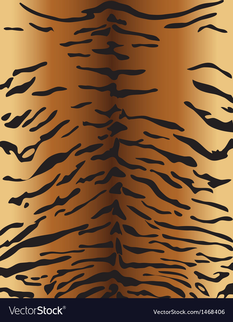 Tiger skin vector | Price: 1 Credit (USD $1)