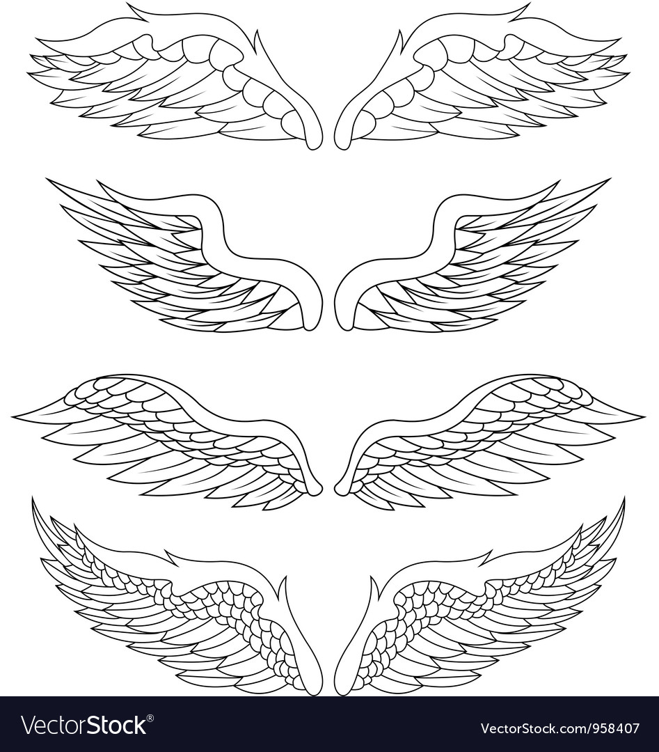 Wings pack vector | Price: 1 Credit (USD $1)