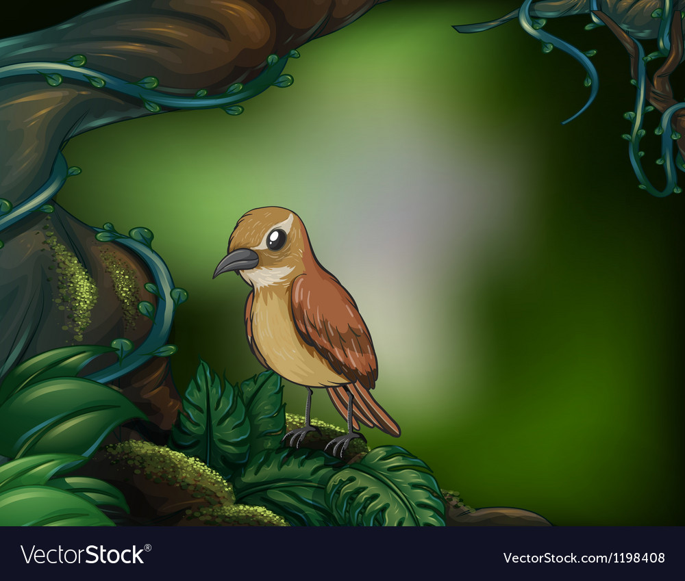 A bird at the rainforest vector | Price: 1 Credit (USD $1)