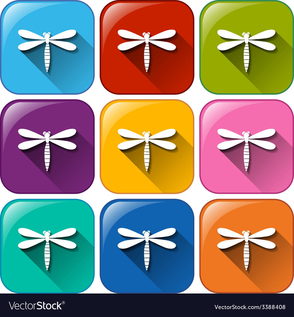 Buttons with dragonflies vector | Price: 1 Credit (USD $1)