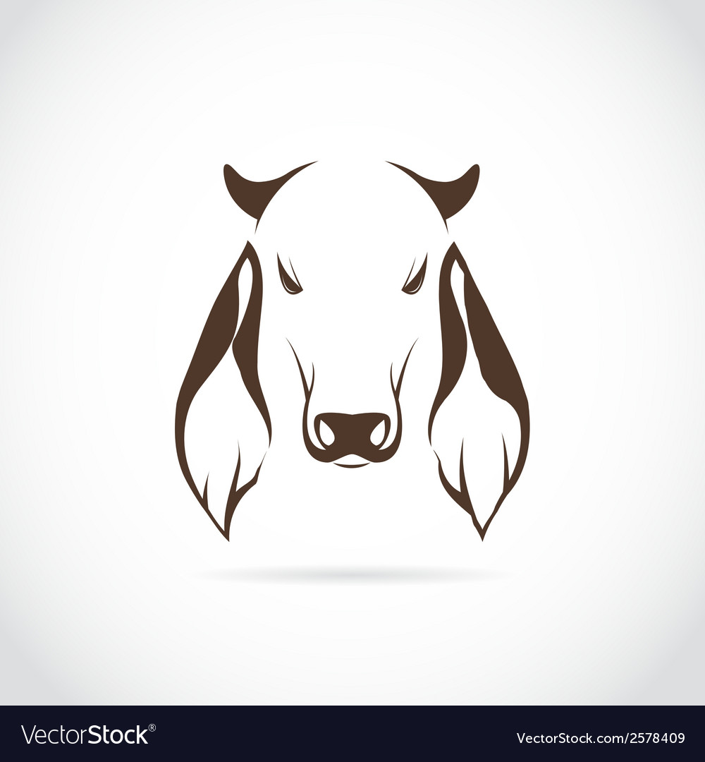 Image of cow head vector | Price: 1 Credit (USD $1)