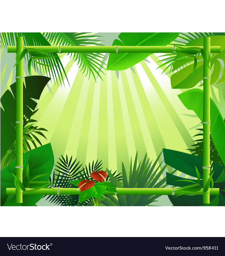 Beautiful forest background with bamboo frame vector | Price: 1 Credit (USD $1)