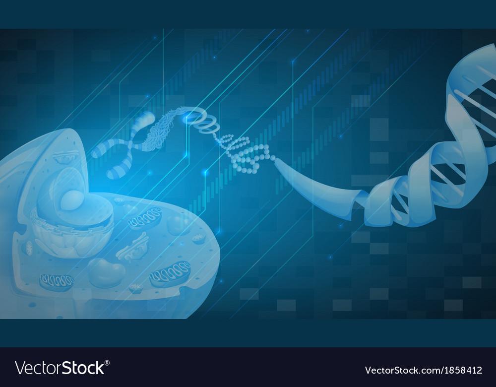 Deoxyribonucleic acid vector | Price: 1 Credit (USD $1)