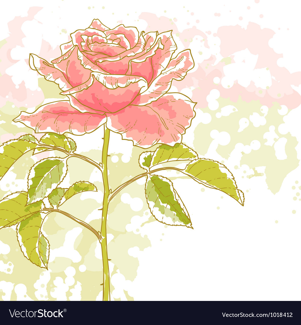 Pink rose on white background vector   Price: 1 Credit (USD $1)