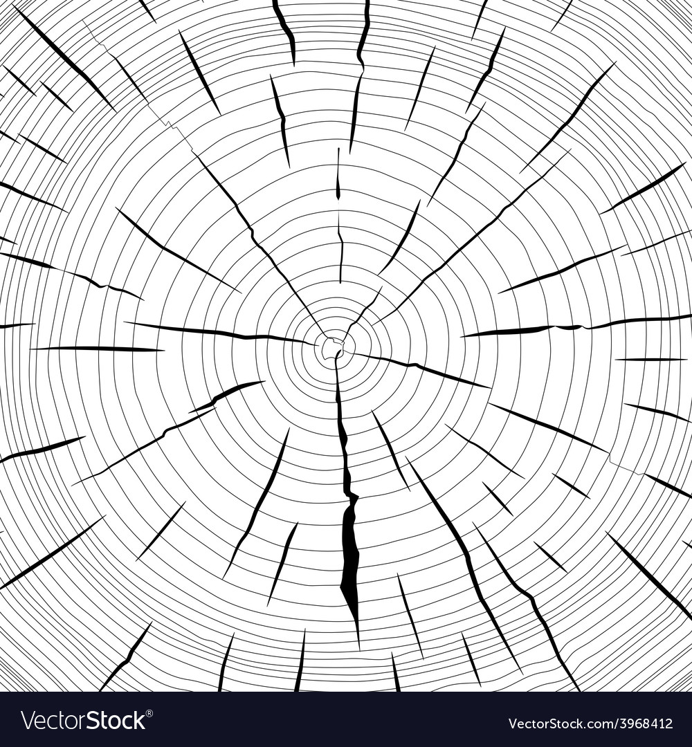 Tree rings saw cut tree trunk background vector | Price: 1 Credit (USD $1)