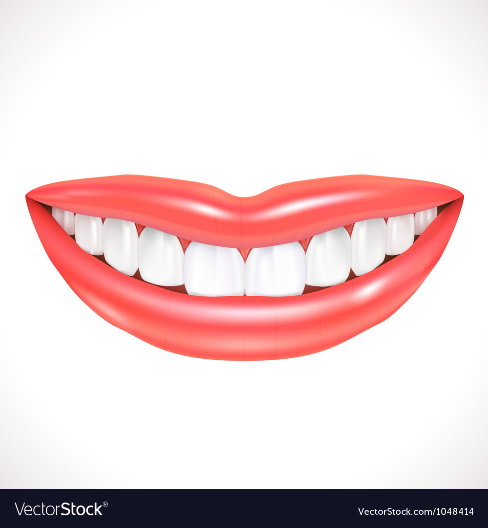 Smile vector | Price: 1 Credit (USD $1)