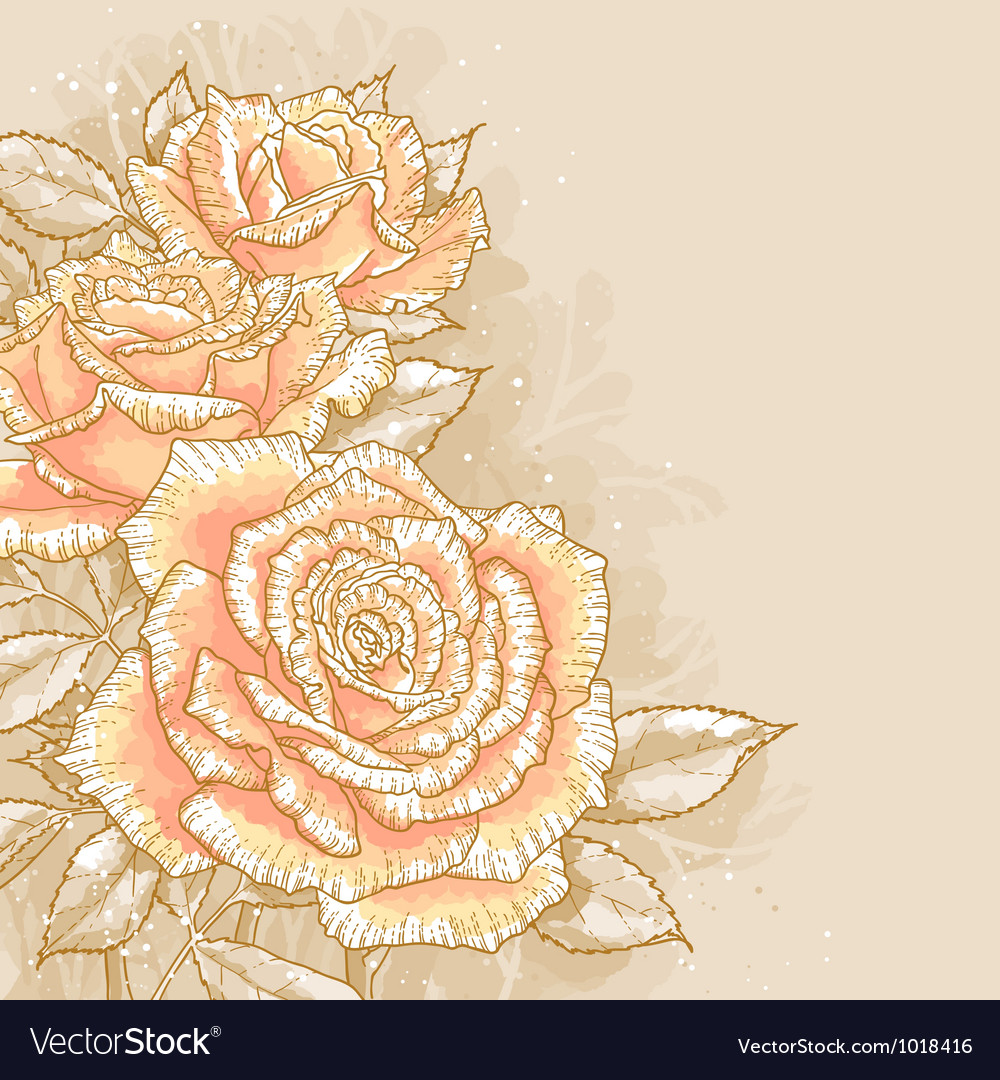 Pink roses on toned background vector | Price: 1 Credit (USD $1)