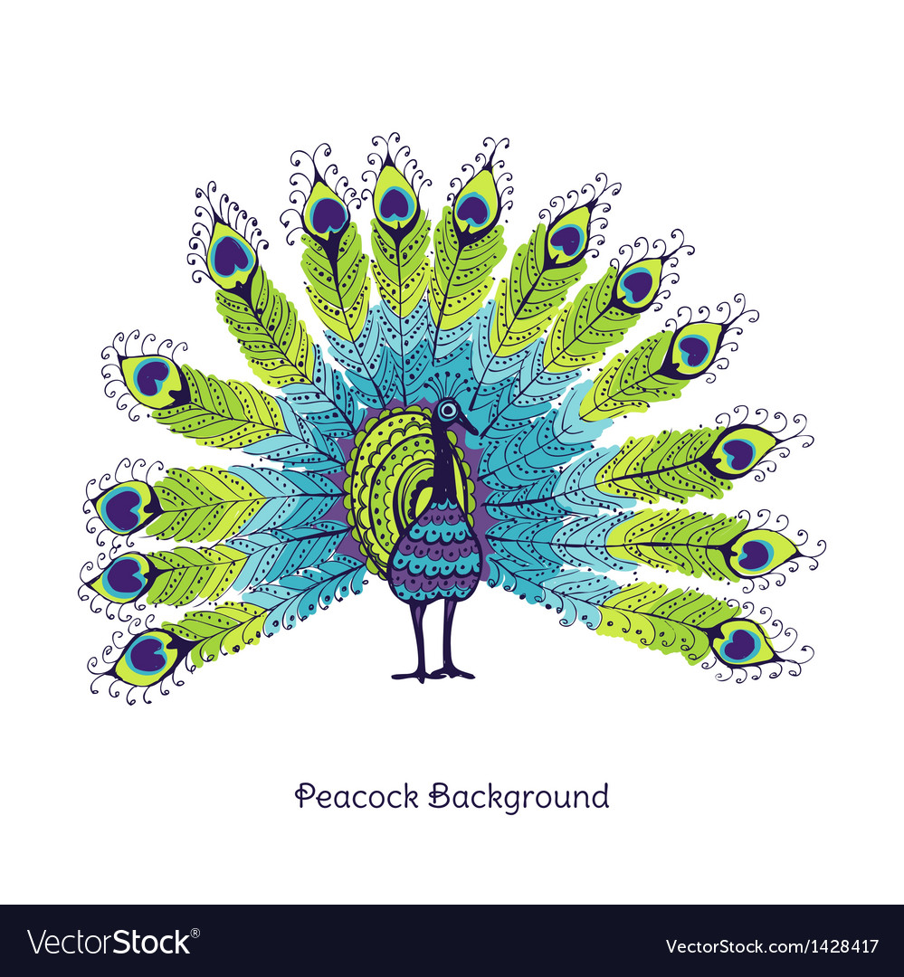 Peacock card vector | Price: 3 Credit (USD $3)