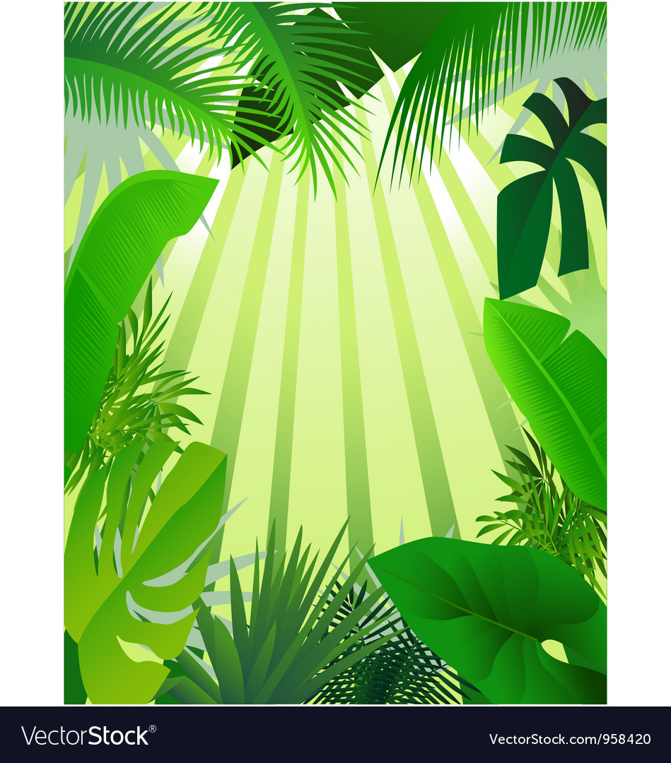 Nature forest background vector   Price: 1 Credit (USD $1)