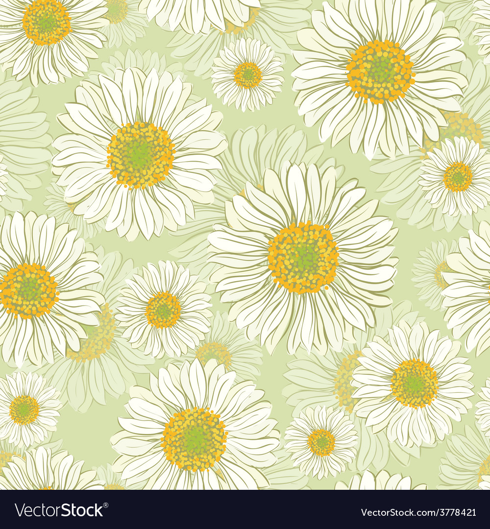 Seamless pattern with daisy flowers vector | Price: 1 Credit (USD $1)