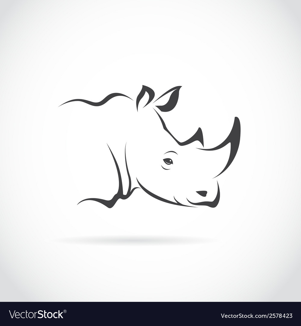 Image of rhino head vector | Price: 1 Credit (USD $1)