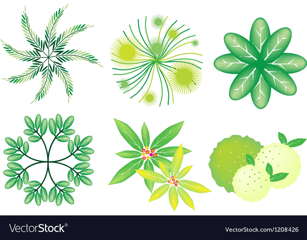 A set of isometric trees and plants vector | Price: 1 Credit (USD $1)