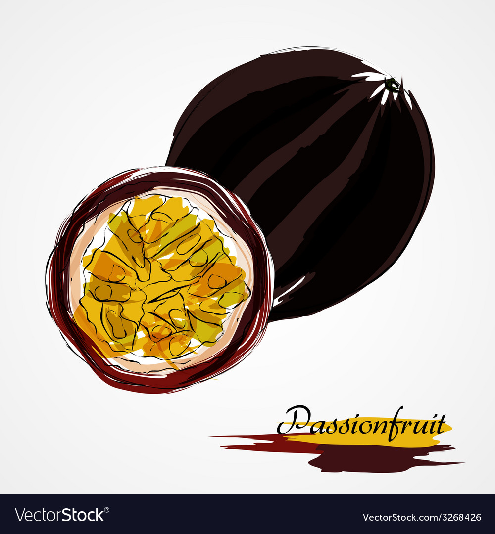 Passionfruit fruits vector | Price: 1 Credit (USD $1)