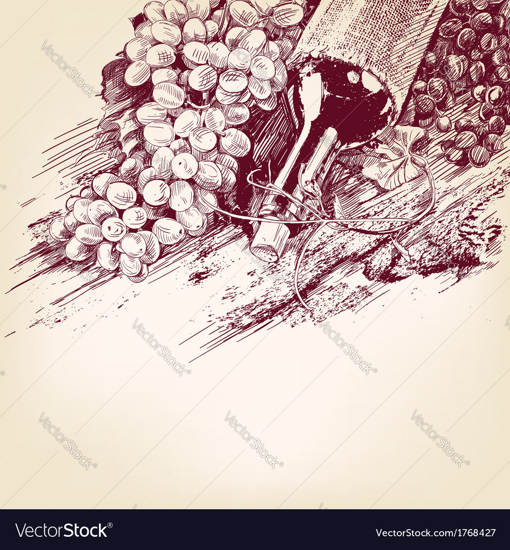 Grapes with a bottle of wine vector | Price: 1 Credit (USD $1)