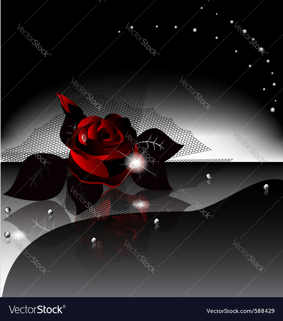 Black rose vector | Price: 1 Credit (USD $1)