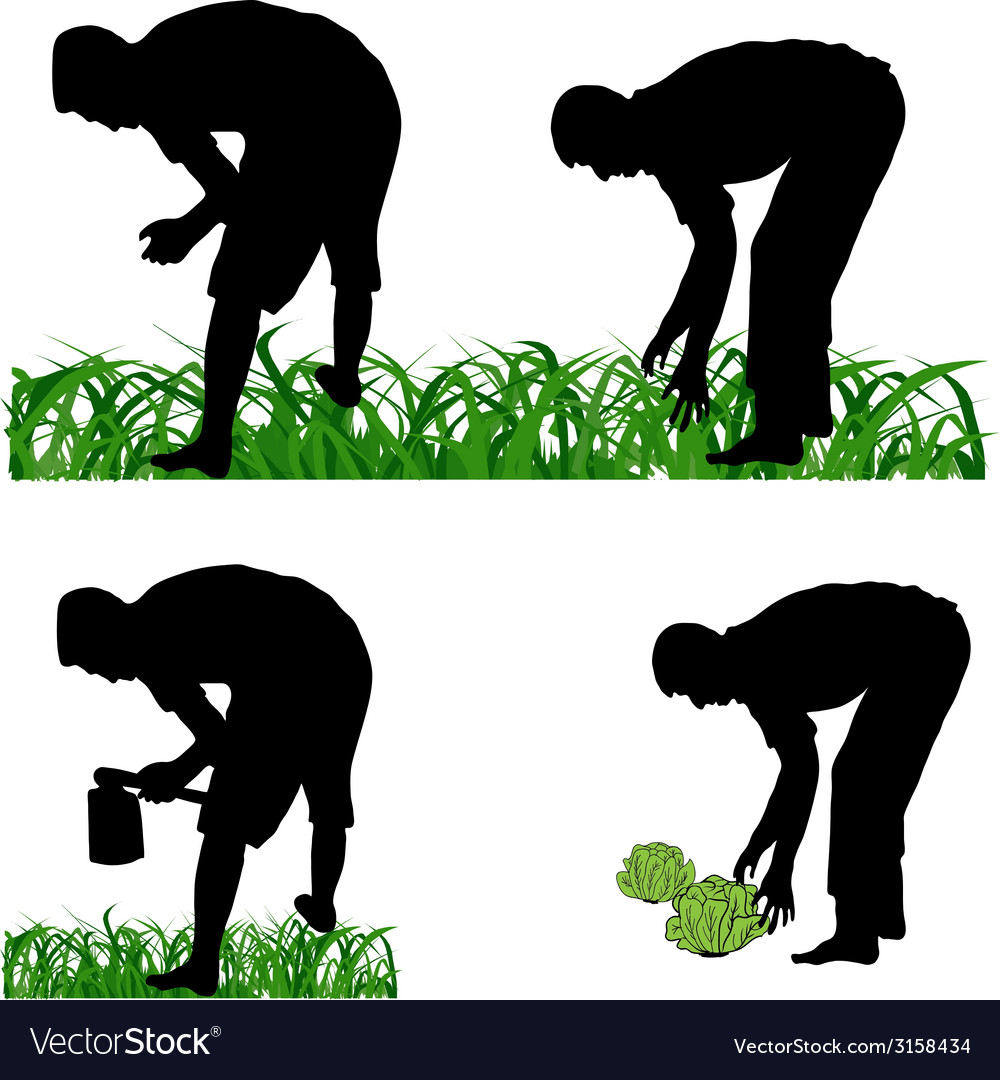 Farmer gardener vector | Price: 1 Credit (USD $1)