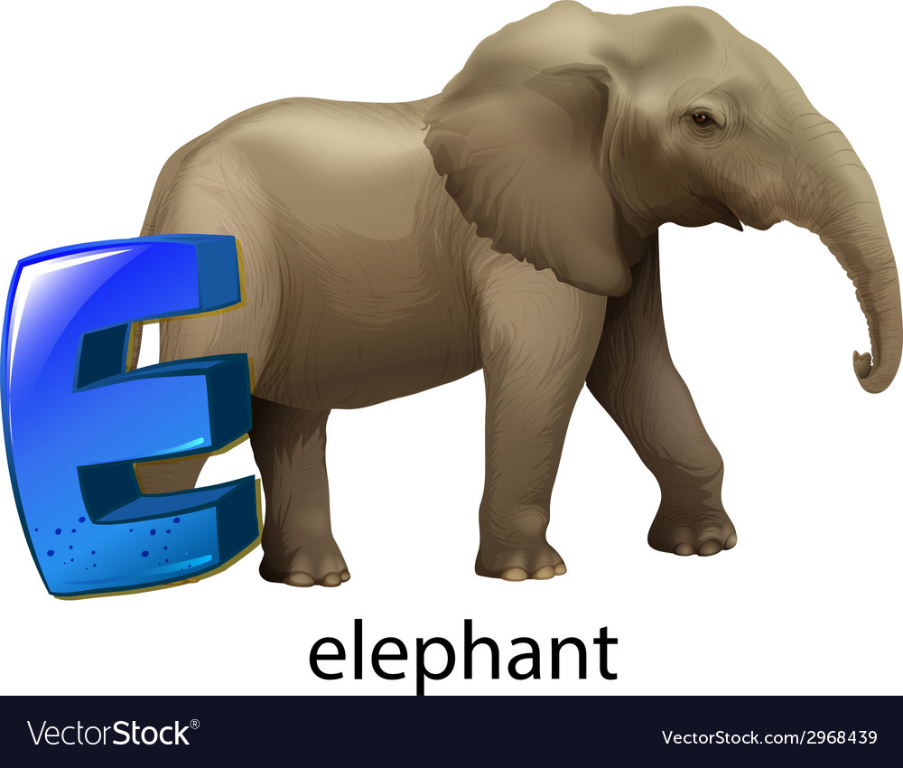 A letter e for elephant vector | Price: 1 Credit (USD $1)