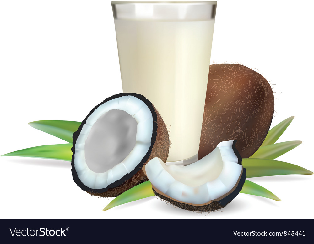 Coconut vector | Price: 3 Credit (USD $3)