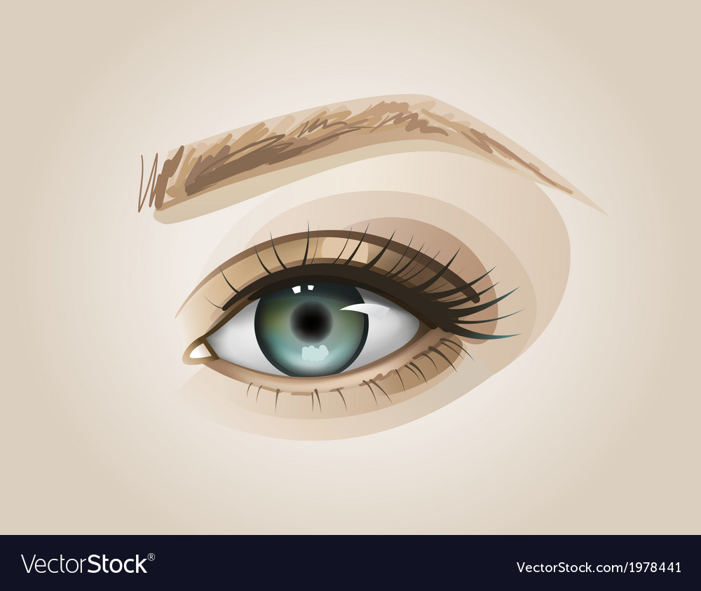 Eye close up vector | Price: 1 Credit (USD $1)
