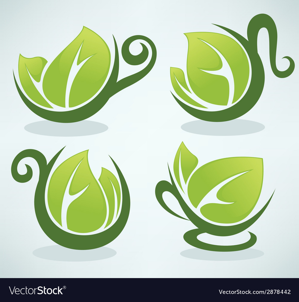 Green tea vector | Price: 1 Credit (USD $1)