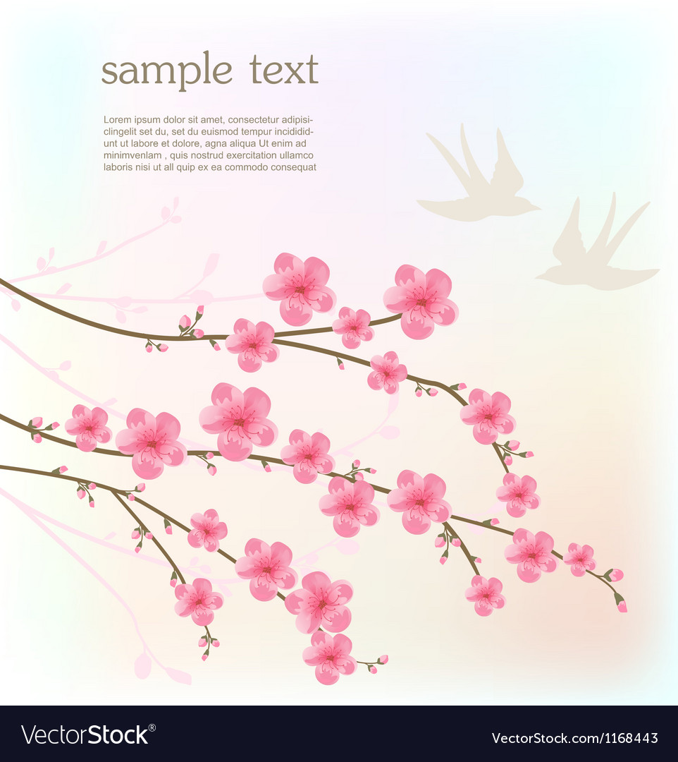 Cherry blossom card vector | Price: 1 Credit (USD $1)