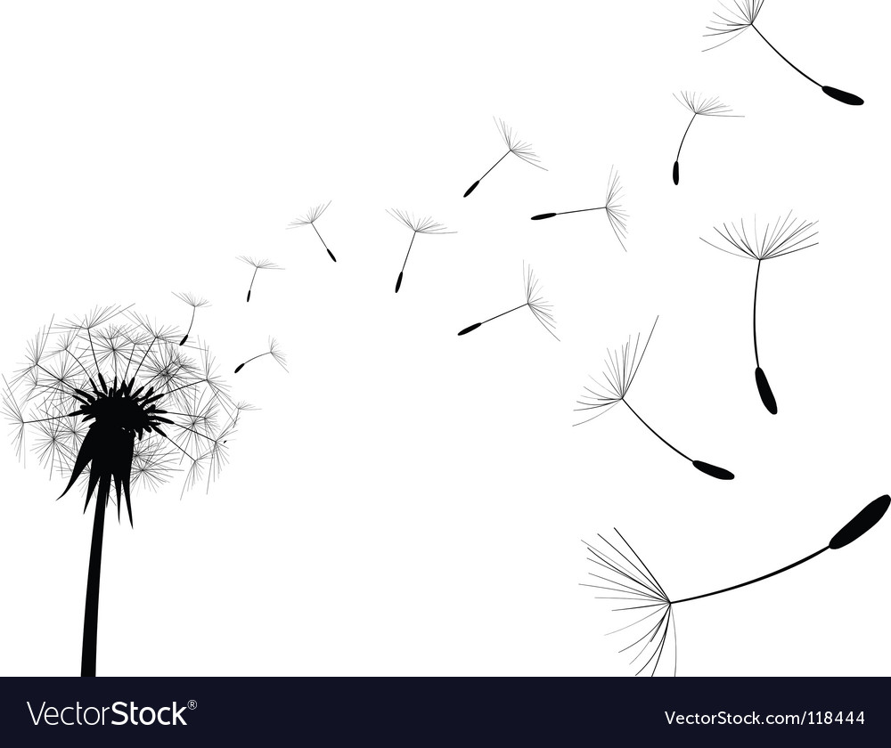 Dandelion black vector | Price: 1 Credit (USD $1)