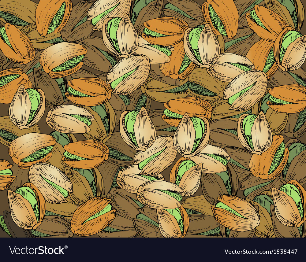 Hand drawn pistachios texture vector | Price: 1 Credit (USD $1)