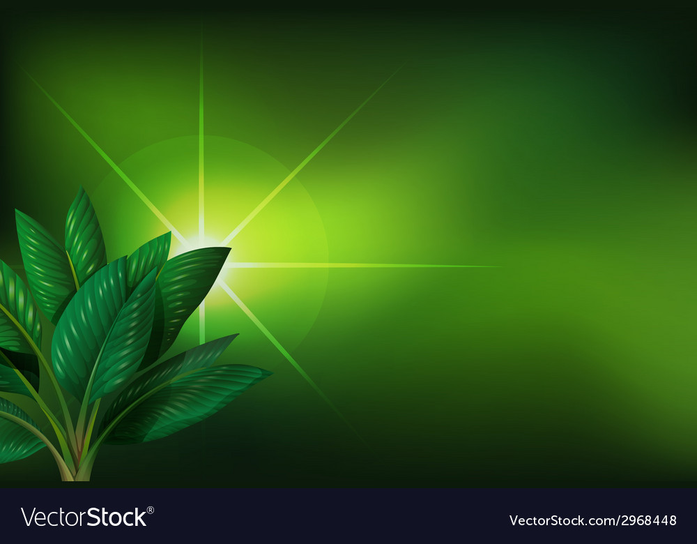 A green background with a plant vector | Price: 1 Credit (USD $1)