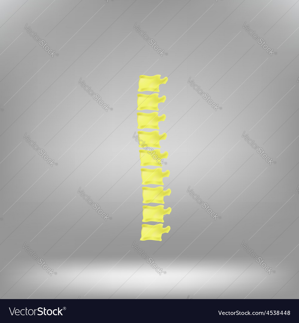Symbol spine vector | Price: 1 Credit (USD $1)