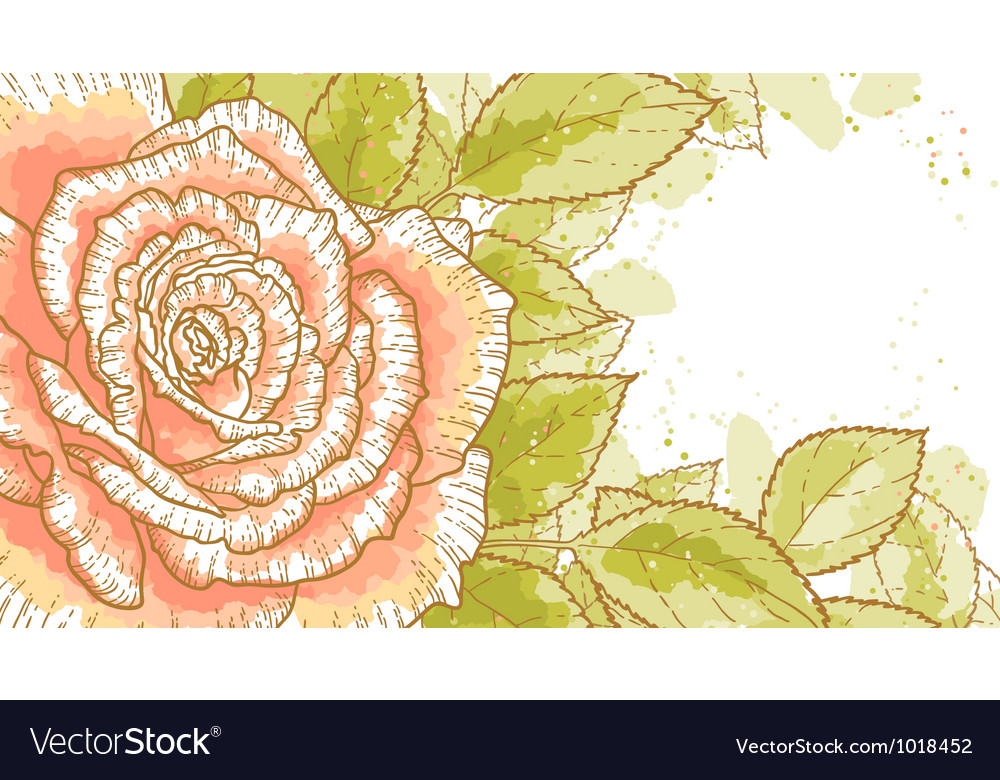 Pink rose on white background vector | Price: 1 Credit (USD $1)