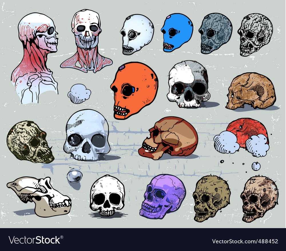 Scull heads vector | Price: 3 Credit (USD $3)