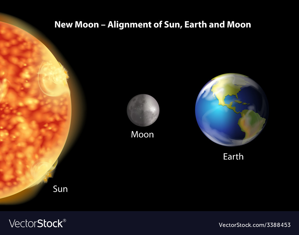 Alignment of sun earth and moon vector | Price: 1 Credit (USD $1)