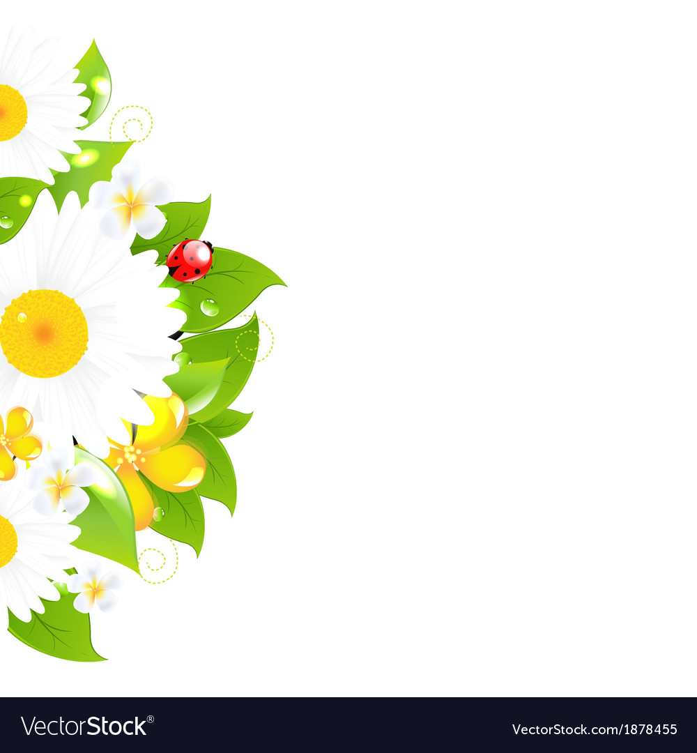 Bunch of flowers with grass vector | Price: 1 Credit (USD $1)