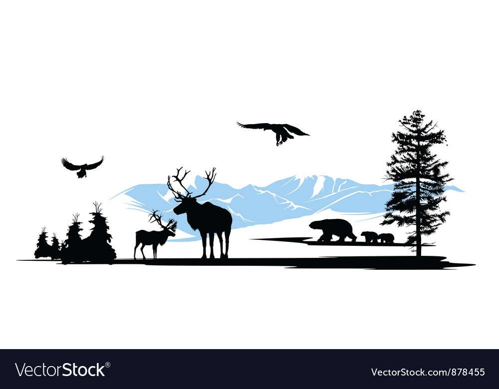 Mountain wildlife animals background vector | Price: 1 Credit (USD $1)