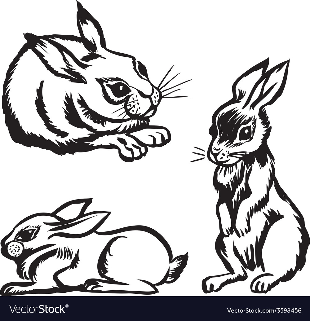 Rabbits set vector | Price: 1 Credit (USD $1)