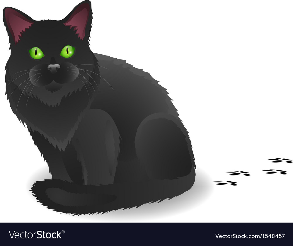 Black cat with footsteps vector | Price: 1 Credit (USD $1)