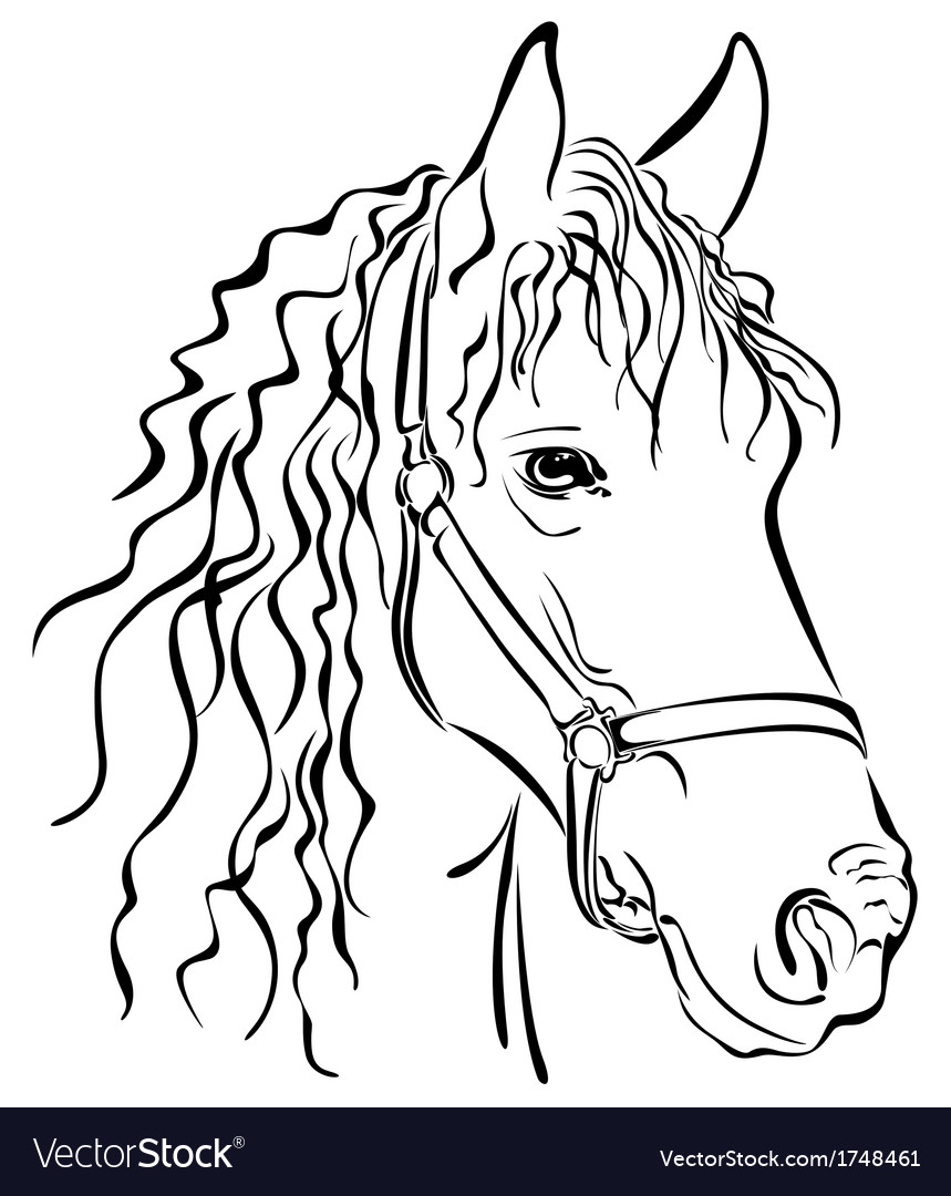 Black horse vector | Price: 1 Credit (USD $1)