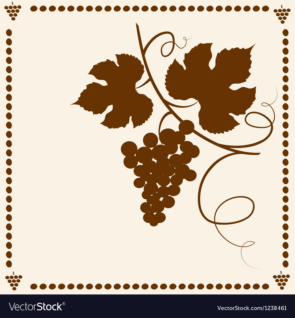 Grape vine vector | Price: 1 Credit (USD $1)