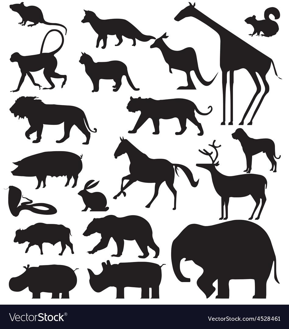 Twenty animal isolate vector | Price: 1 Credit (USD $1)