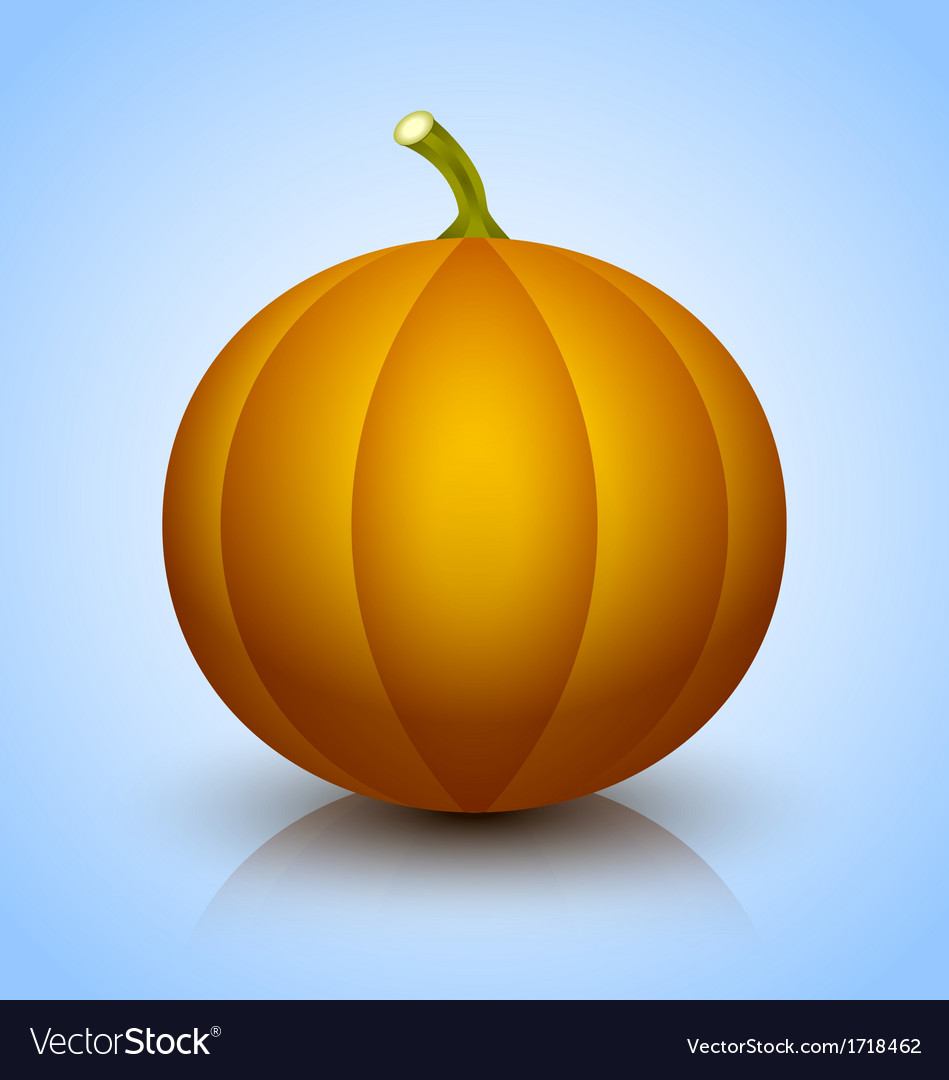 Pumpkin icon vector | Price: 1 Credit (USD $1)