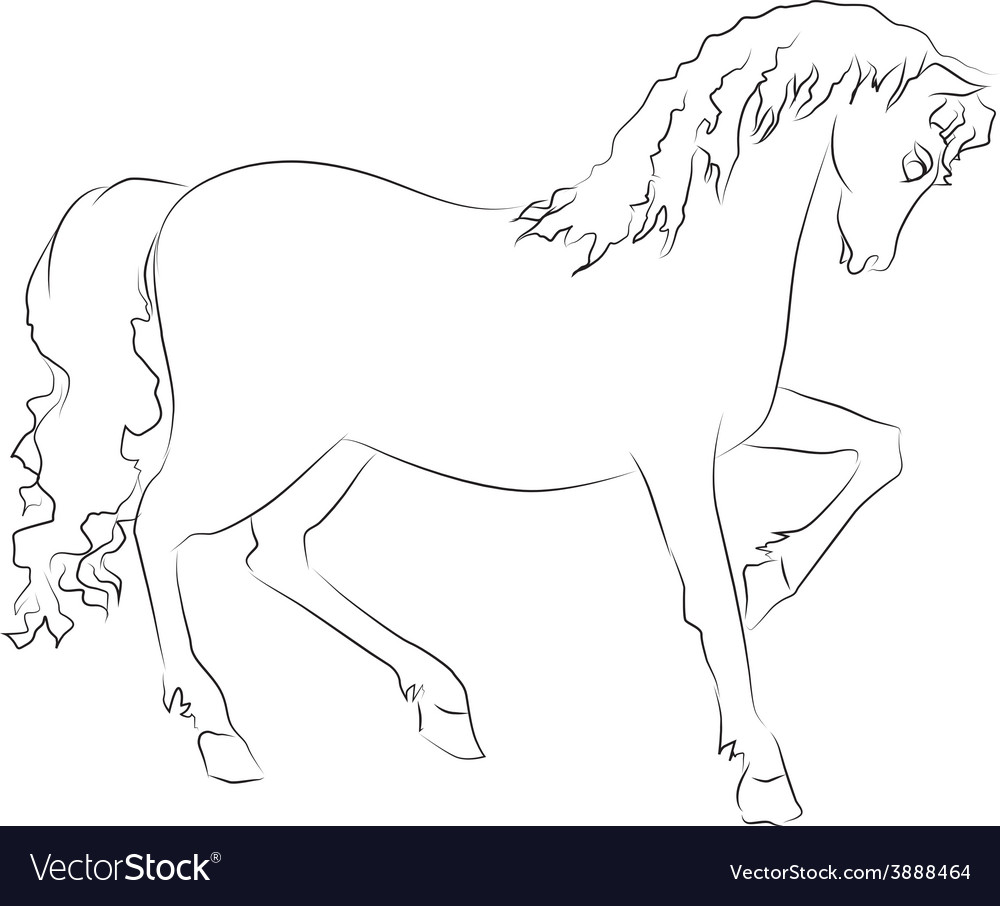 Image of an horse on white background vector | Price: 1 Credit (USD $1)
