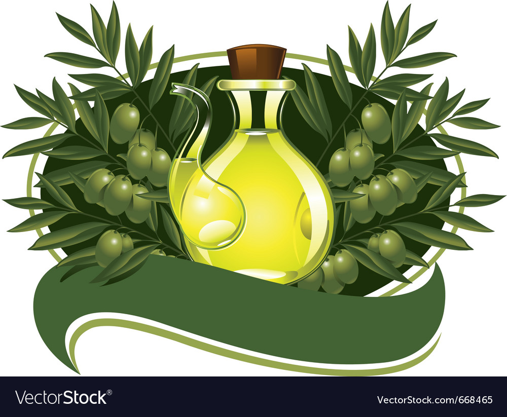 Olive oil vector | Price: 3 Credit (USD $3)