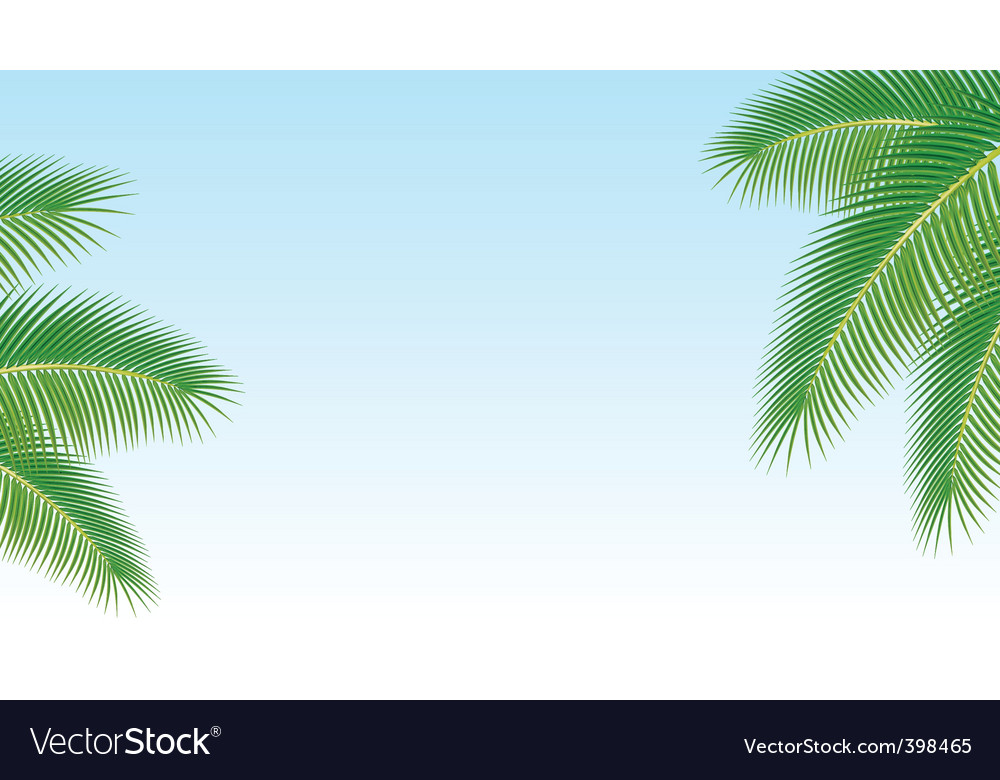 Palm branches against the blu vector | Price: 1 Credit (USD $1)