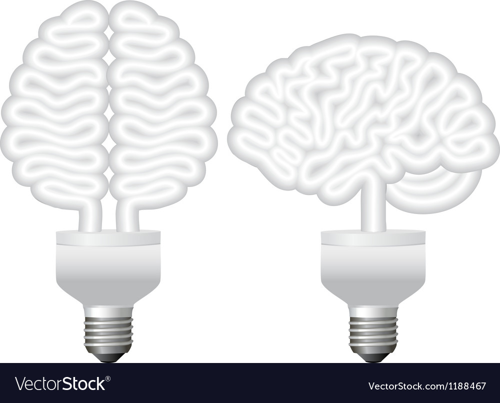 Human brain bulb vector | Price: 1 Credit (USD $1)